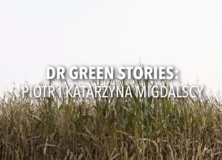 DR GREEN STORIES 1